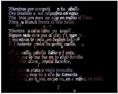 María  Mencía, Transient  Self-Portrait, 2012. Poema conceptual